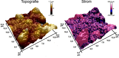 Atomic Force Microscopy (AFM) is a method of characterizing a sample surface by passing a tip close to the surface to be examined. By measuring the atomic forces between the tip and the surface by means of the deflection of the tip, it is possible to obtain information about the topography of the surface or to determine the magnetic and chemical properties of the surface. The picture on the left shows the topography of a cathode for lithium-ion batteries investigated by AFM, in which as active material secondary particles of Li(Ni,Co,Mn)O2 with a diameter of a few micrometers are embedded in carbon. In the right image, an electrically conductive tip was used during the AFM measurement to examine the electrical conductivity of the cathode at the surface. Clearly recognizable is the impact of carbon as conductive additive, since an electrical current is measured mainly in the region, where carbon is found. (Picture submitted by Miguel Wiche and Matthias Elm)