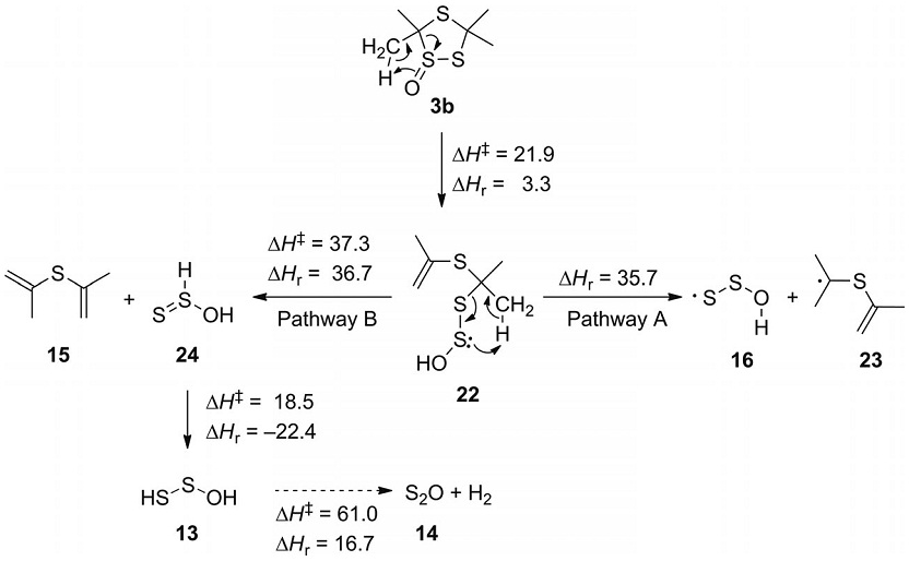 Thermolysis of 3,3,5,5-Tetramethyl-1,2,4-trithiolane 1-Oxide: First Matrix Isolation of the HOSS· Radical