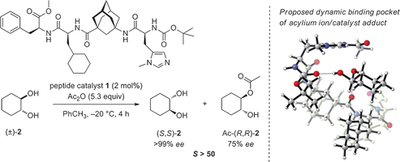 Enantioselective Peptide-Catalyzed Acylation