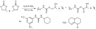 Urea- and Thiourea-Catalyzed Aminolysis of Carbonates.png