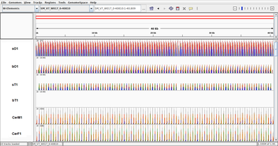 Genome_viewer