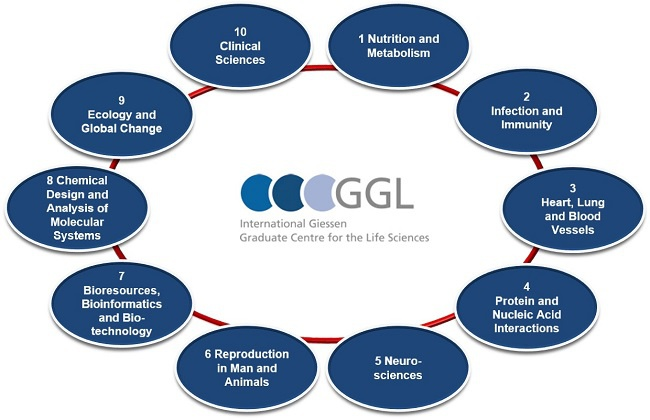 GGL Sections