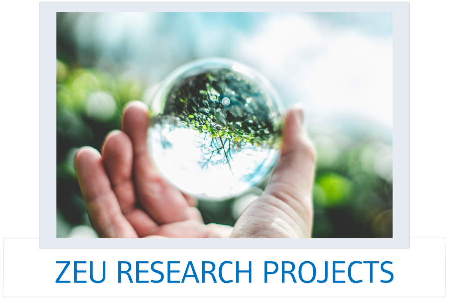 ZEU Research Projects