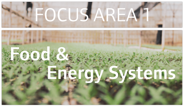 Focus Area One called Food and Energy Systems