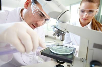 Wissenschaftliche Mitarbeiter und Mitarbeiterinnen (Foto: Colourbox.de/Pressmaster)