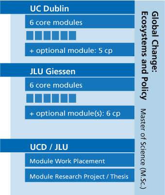 VisualVisual presentation of the courses of study. All information can be found in the text.
