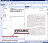 Citavi Fulltext PDF Link